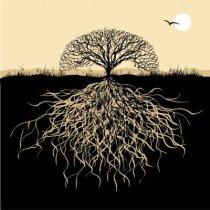la punta del árbol
